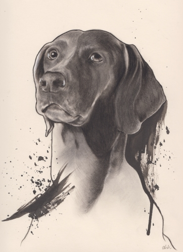 'Winslow' | Pencil & Ink on paper.